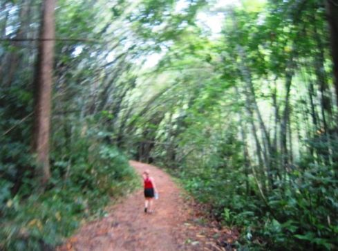 Color photo of Author Walking through the forest in Thailand